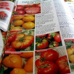 Seed catalogs have been arriving since December but a little bit of spring weather can temp gardeners in the desert climates of the Intermountain West to plant vegetable gardens too soon